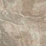 Fossil brown naturale 50x50